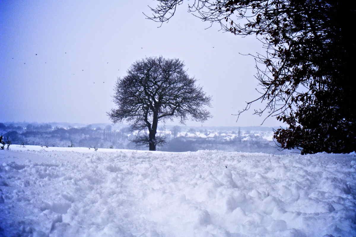 Hockley-Woods-Winter
