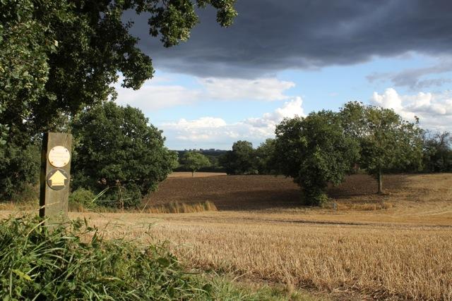 hockley-landscapes