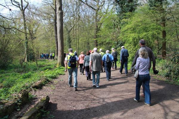 Rochford-Council-Walk